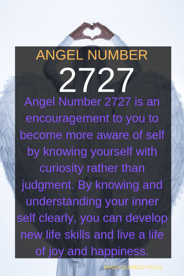 2727 angel number: Build Self-Awareness And Develop Life Skills.