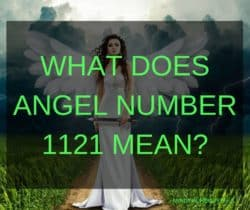 Angel Number 1121 is a message from your Angels and Ascended Masters that there is a need for changing the ways of doing things. There is a need for new beginnings in your life and to change the old job, work, and projects in order to achieve success.