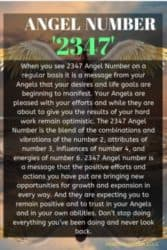 When you see 2347 Angel Number on a regular basis it is a message from your Angels that your desires and life goals are beginning to manifest. Your Angels are pleased with your efforts and while they are about to give you the results of your hard work remain optimistic.