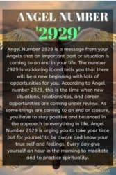 Angel Number 2929 is a message from your Angels that an important part or situation is coming to an end in your life. The number 2929 is validating it and tells you that there will be a new beginning with lots of opportunities for you.