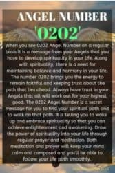When you see 0202 Angel Number on a regular basis it is a message from your Angels that you have to develop spirituality in your life. Along with spirituality, there is a need for maintaining balance and harmony in your life.