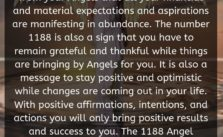 The 1188 Angel Number is a message from your Angels that all your financial and material expectations and aspirations are manifesting in abundance. The number 1188 is also a sign that you have to remain grateful and thankful while things are bringing by Angels for you.