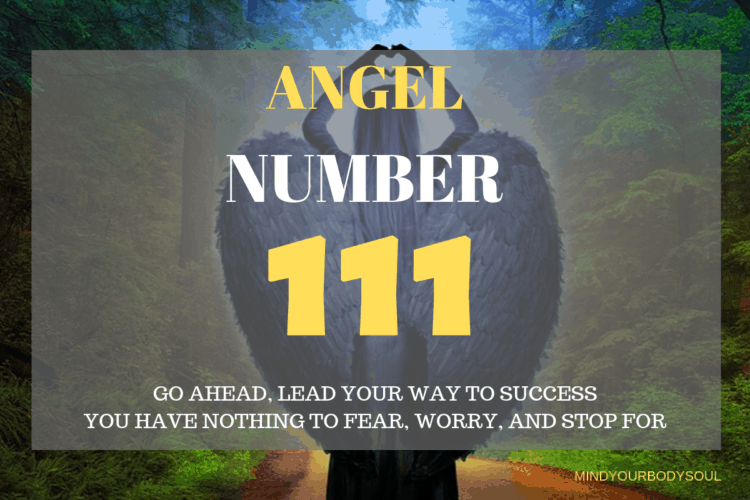 When you see angel number 111 on a regular basis then it is a message from Angels and Universal Energies that an energy portal is opened up for you. The number 111 means that you are going to fulfill your dreams and desires soon.