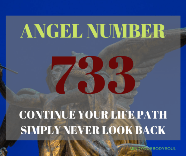 733 Angel Number