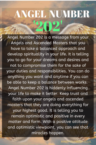 Angel Number 202 is a message from your Angels and Ascended Masters that you have to take a balanced approach and develop spirituality in your life.