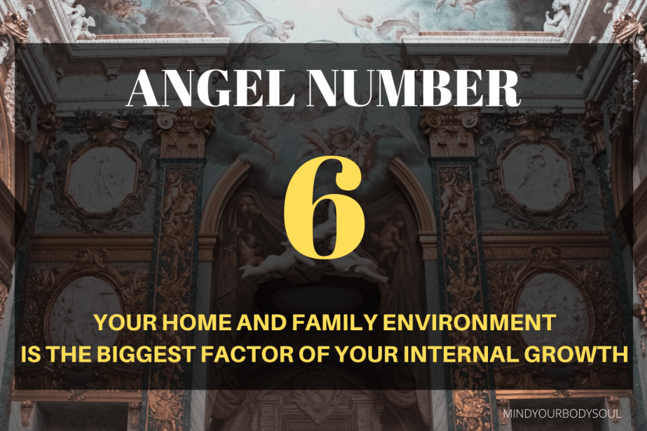 Angel number 6 means that there is a need for a balanced attitude towards the material or physical needs and spiritual or inner-self.