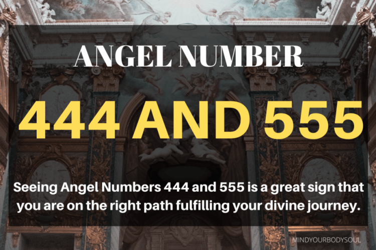 Angel Numbers 444 and 555 is a great sign that you are on the right path fulfilling your divine journey.