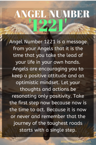 Angel Number 1221 is a message from your Angels that it is the time that you take the lead of your life in your own hands.