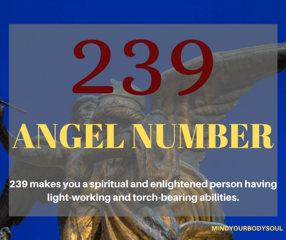 239 Angel Number