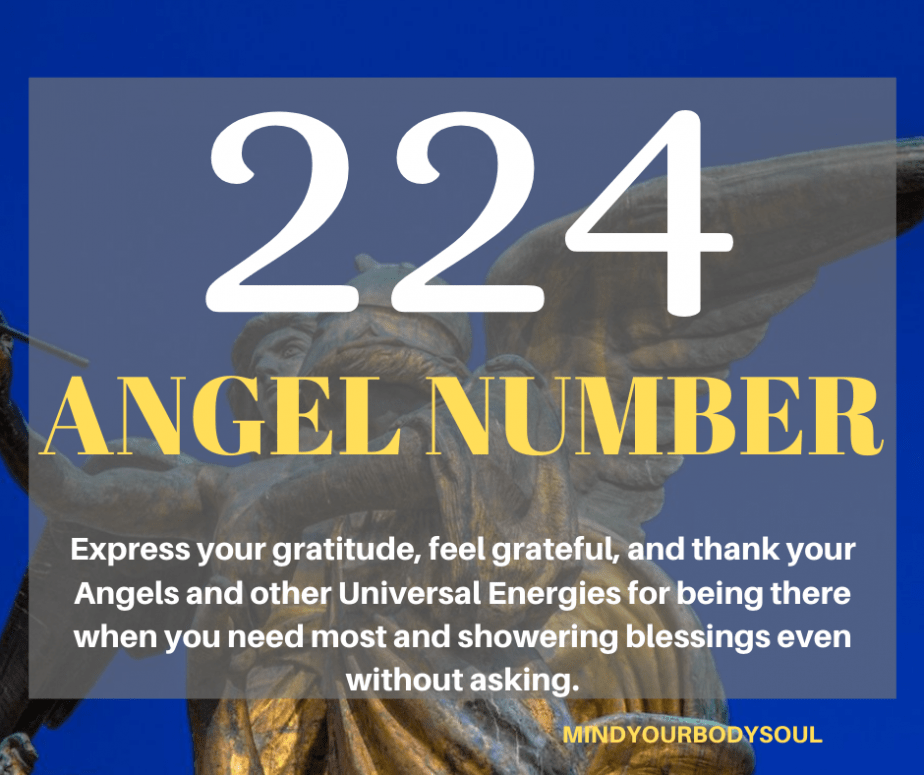 224 Angel Number