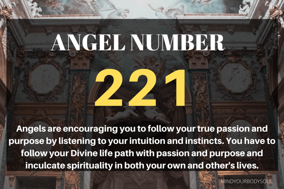 221 Angel Number