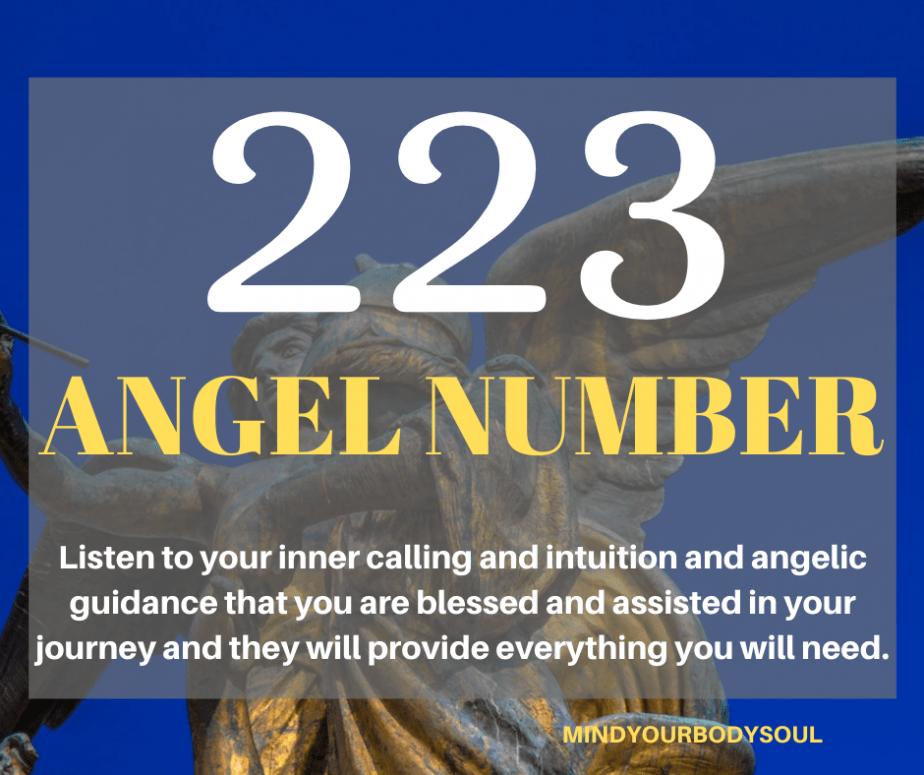 223 Angel Number