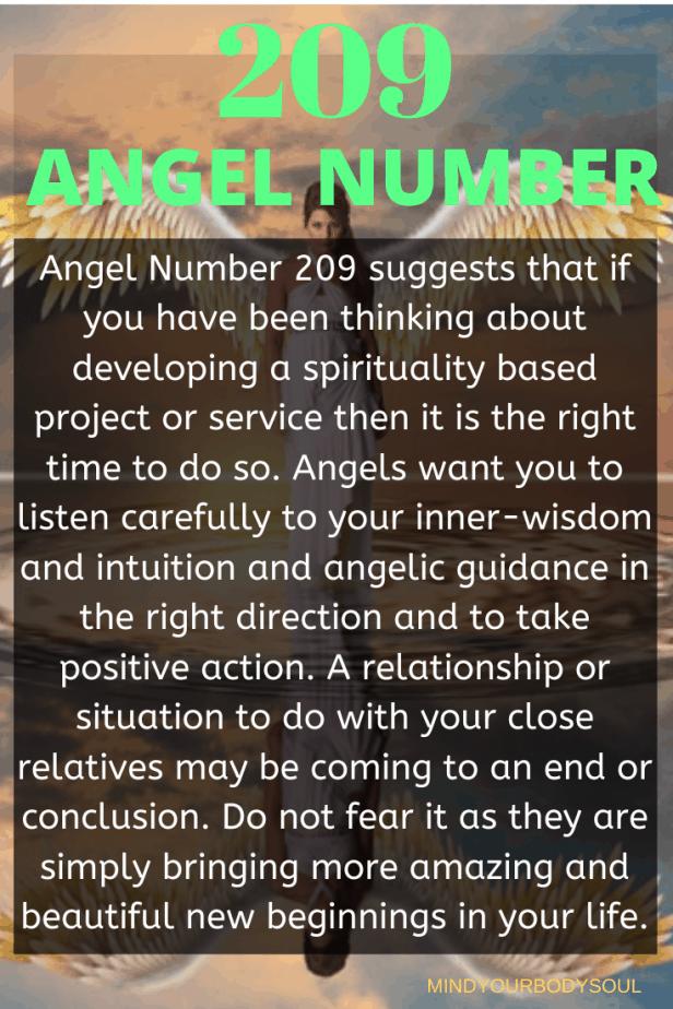 209 Angel Number
