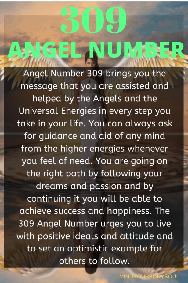 309 Angel Number