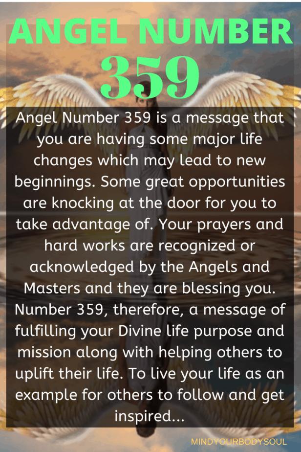 359 Angel Number
