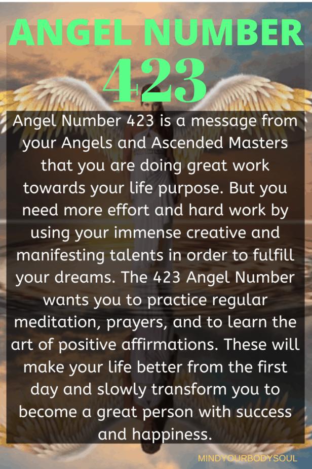 423 Angel Number