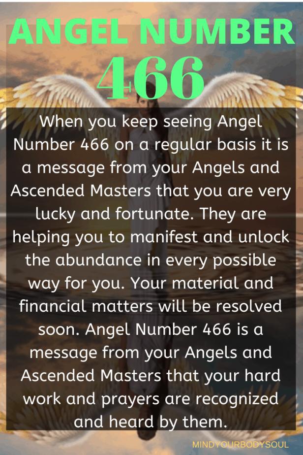 466 Angel Number