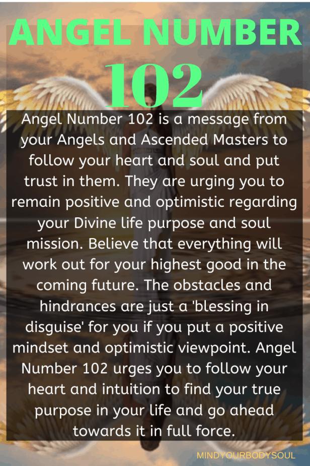 102 Angel Number