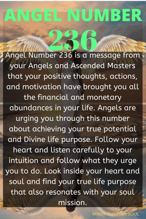 236 Angel Number