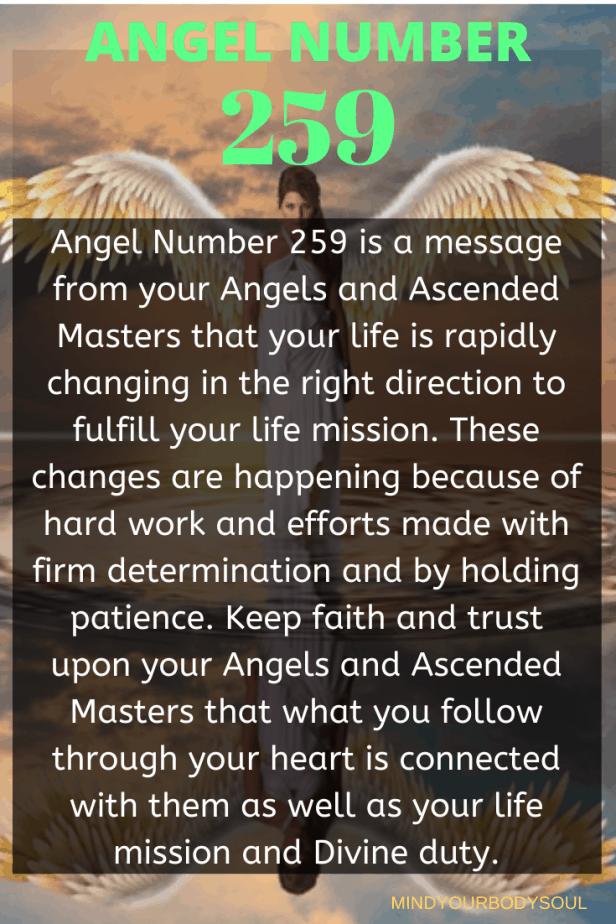 259 Angel Number