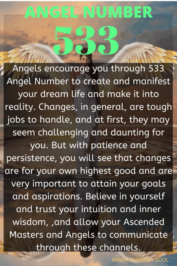 533 Angel Number