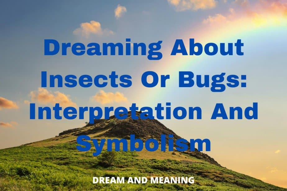 dream about insects and bugs