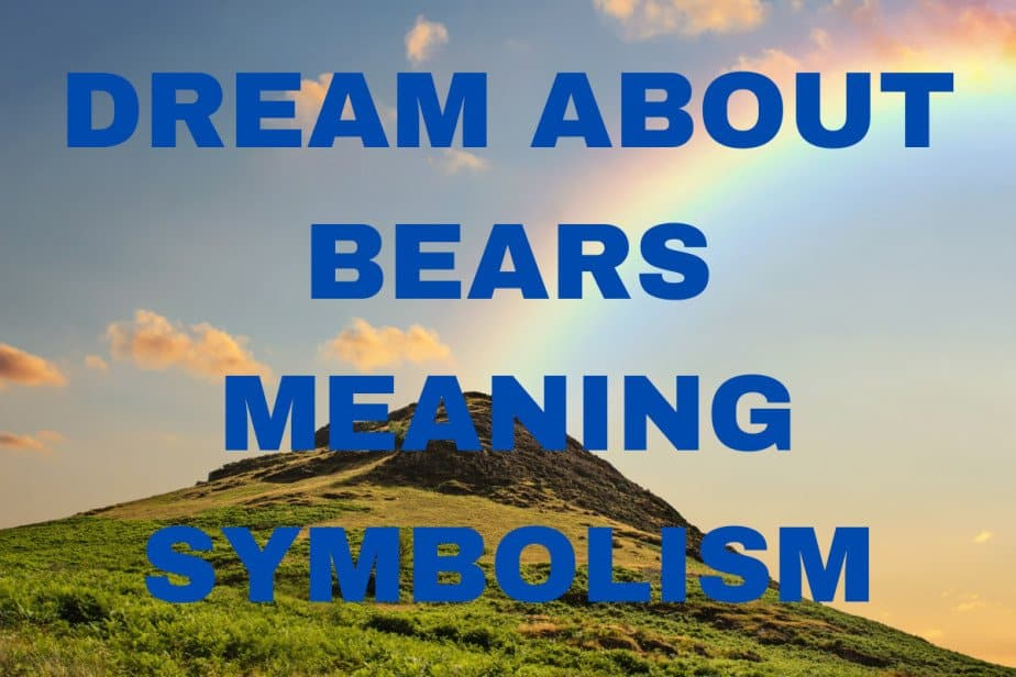 Dream about bears meaning and symbolism