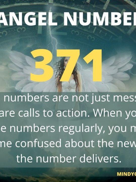 371 Angel Number