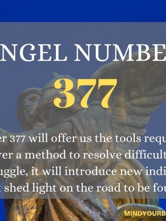 377 Angel Number