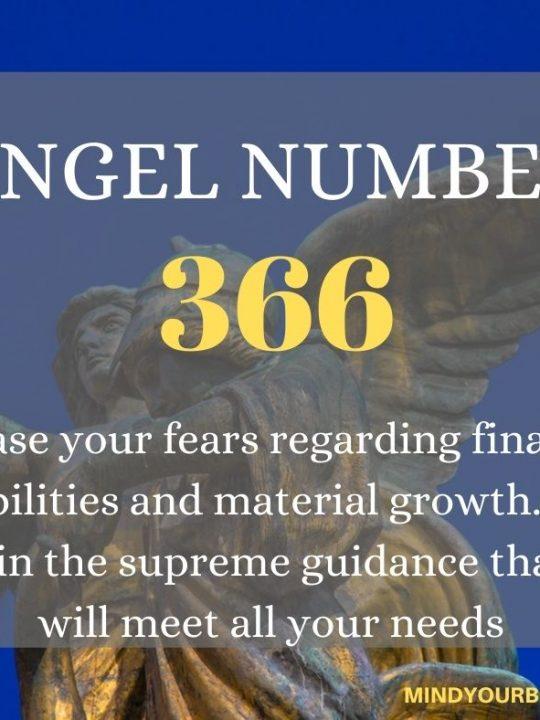366 Angel Number