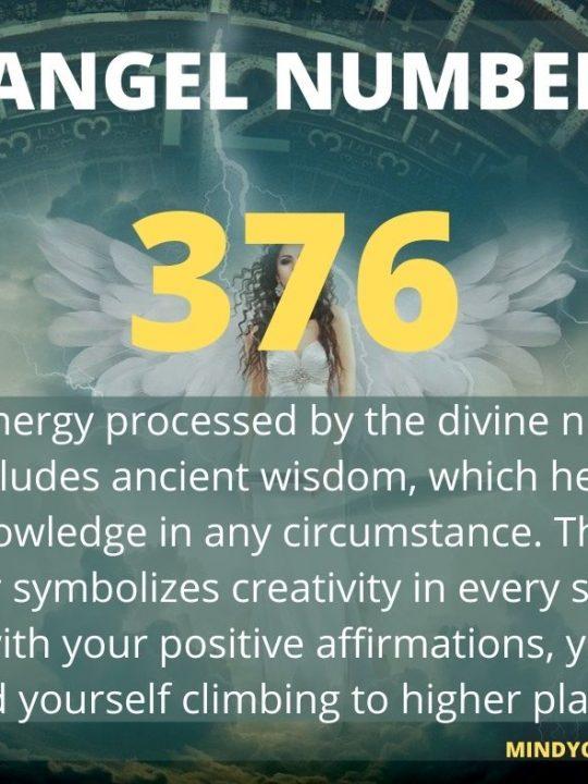 376 Angel Number