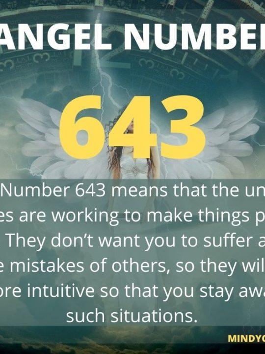 643 Angel Number