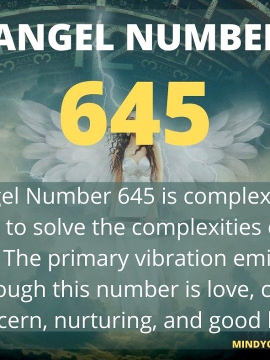 645 Angel Number