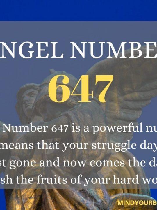 647 Angel Number