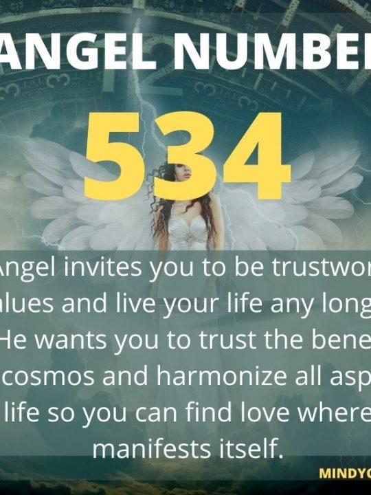534 Angel Number