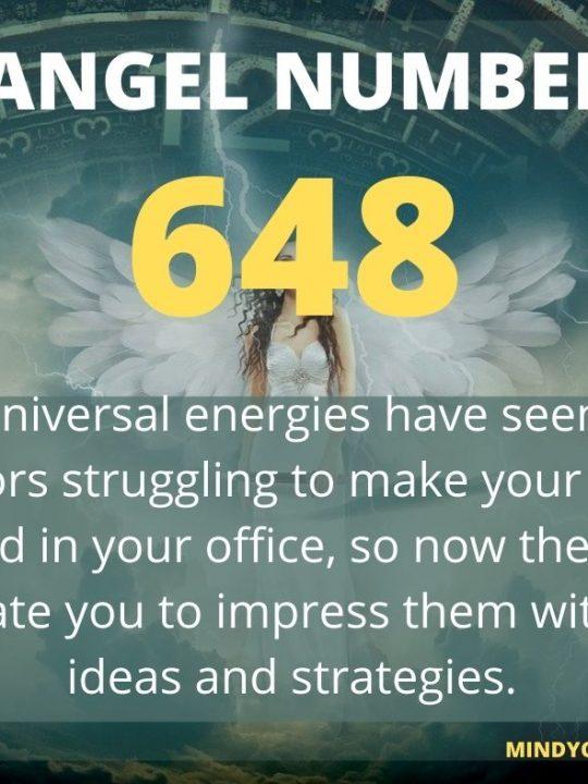 648 Angel Number