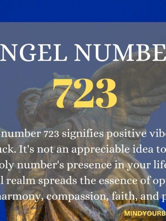 723 Angel Number