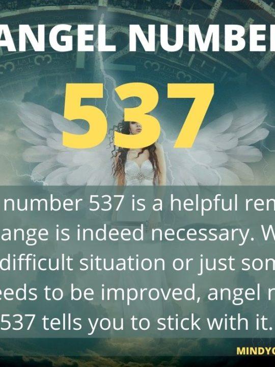 537 Angel Number