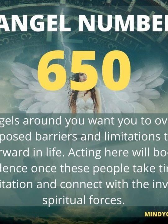 650 Angel Number