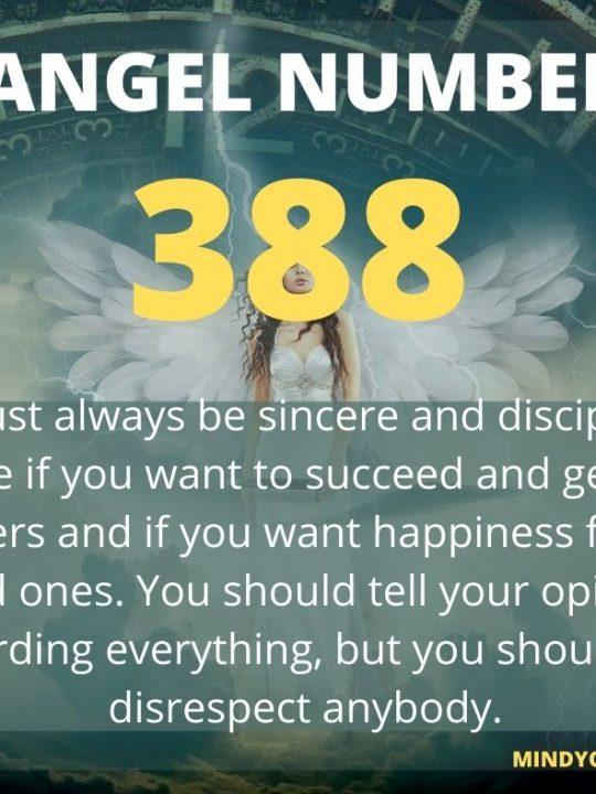 388 Angel Number