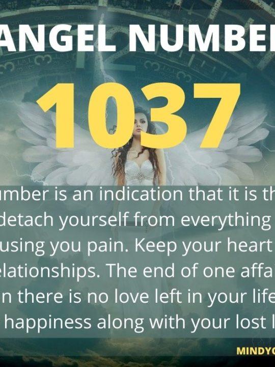 1037 Angel Number