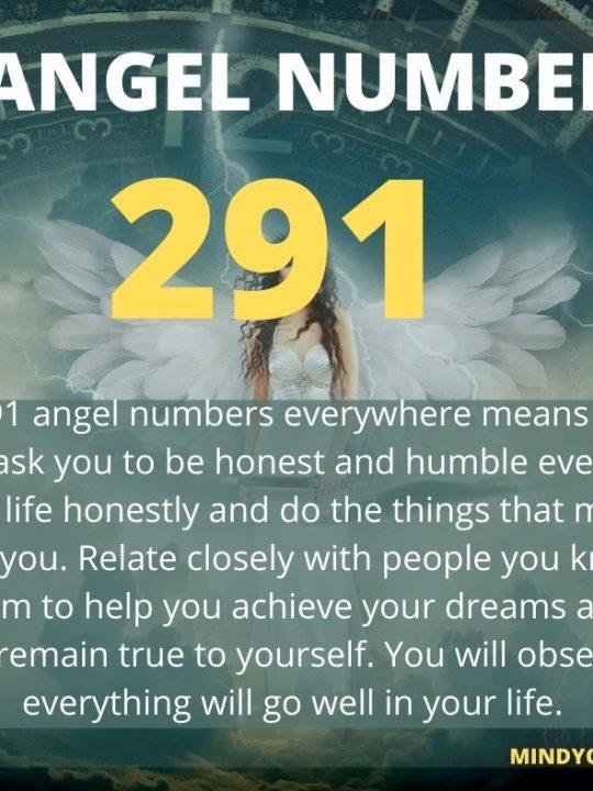 291 Angel Number