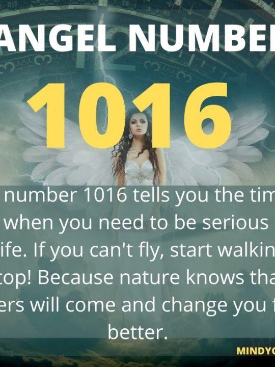 1016 Angel Number