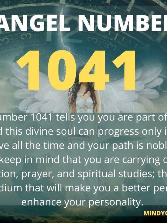 1041 Angel Number