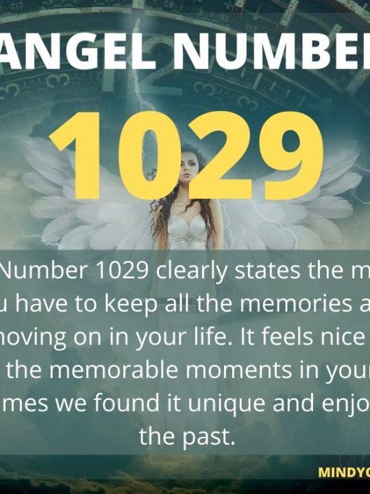 1029 Angel Number