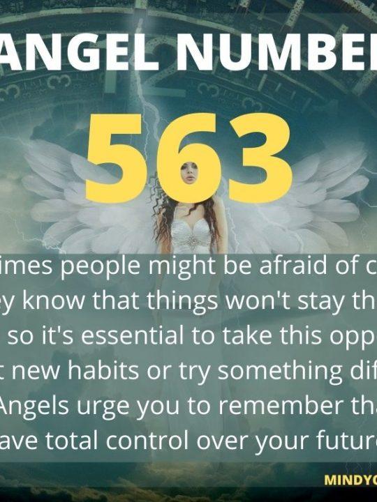 563 Angel Number