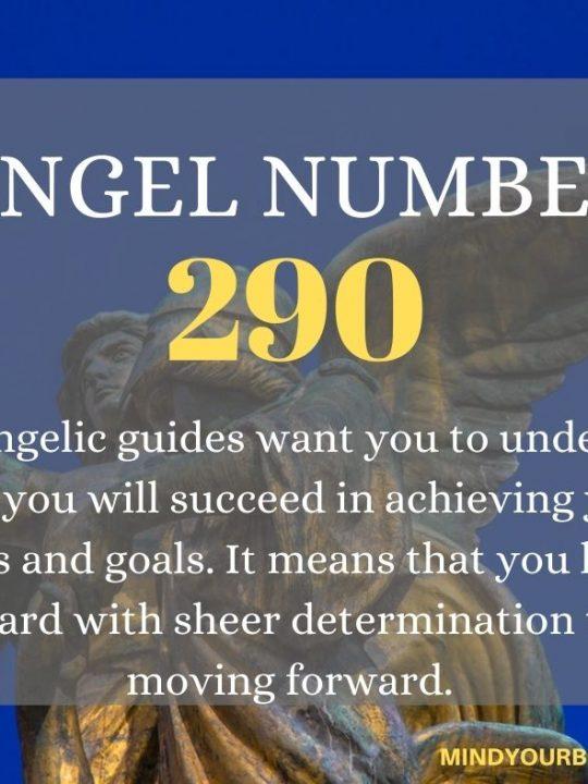 290 Angel Number
